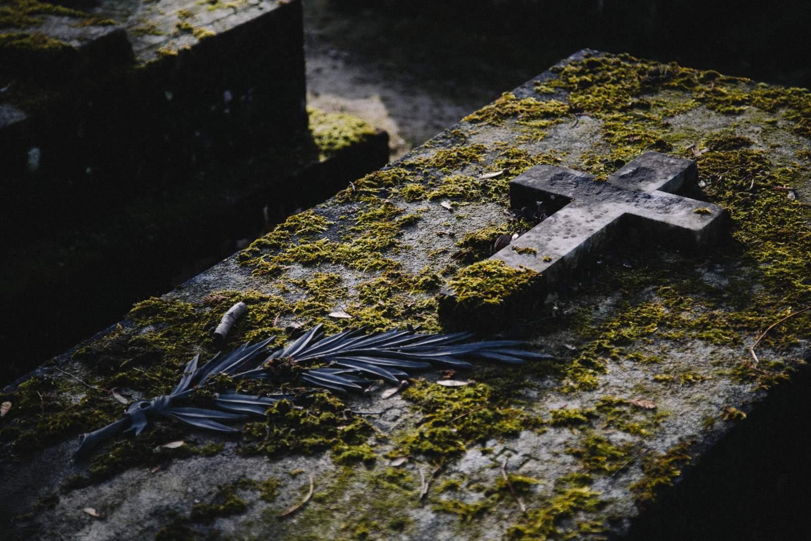 ekshumacja